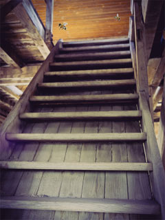 A photo of attic stairs