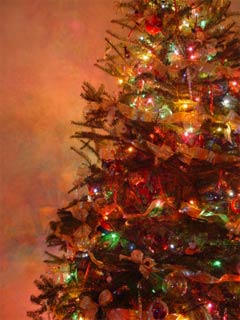A photo of a decorated Christmas tree