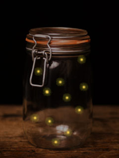 A photo of fireflies in a jar