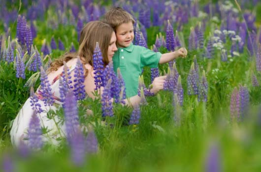 A photo of a mother and her son in a field of purple flowers