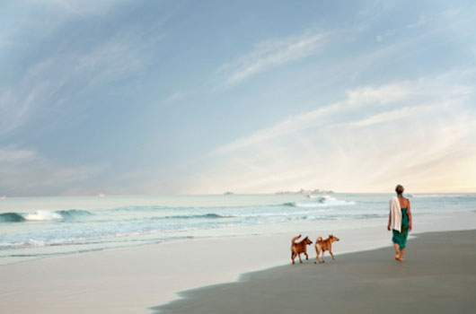 A photo of a woman and two dogs walking on the beach