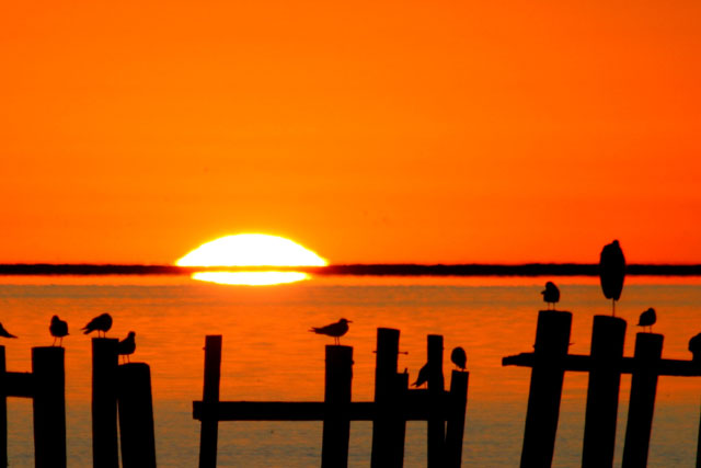 A photo of a vivid orange sunset over the water.