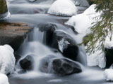 Photo of an icy stream